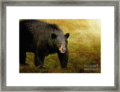 Here Comes Trouble Framed Print by Lois Bryan