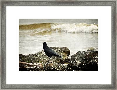 Here I Love You Framed Print by Rebecca Sherman