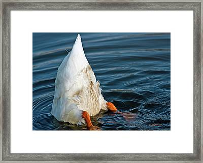 Here Is What I Think Framed Print by Edward Peterson