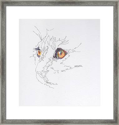 Here Kitty Kitty Framed Print by Kimberly Santini