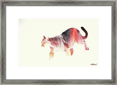Here Kitty Kitty Framed Print