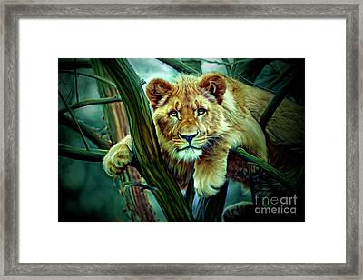 Here, Kitty, Kitty Framed Print