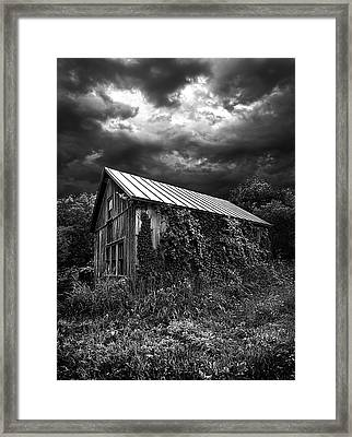 Hereafter Framed Print by Phil Koch