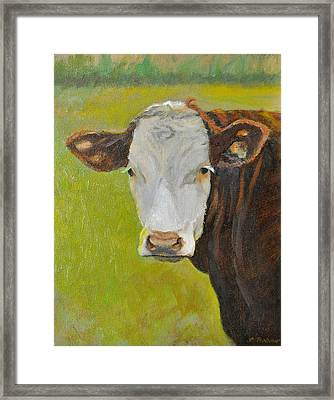 Hereford Cow Portrait Framed Print