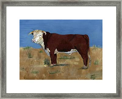 Hereford Framed Print