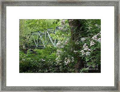 Framed Print featuring the photograph Hereford Wildlands by Chris Scroggins