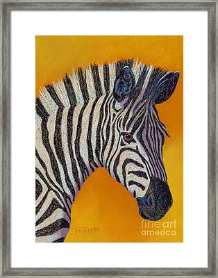 Here's Lookin At You Framed Print by Tracy L Teeter