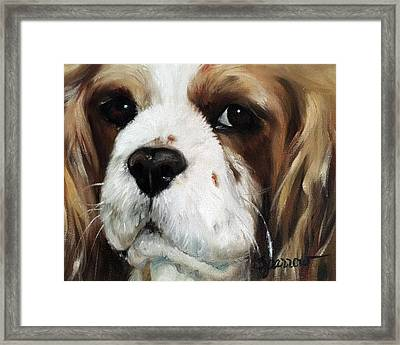 Here's Looking At You Framed Print by Mary Sparrow
