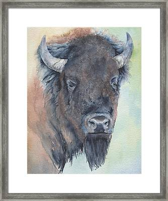Here's Looking At You - Bison Framed Print