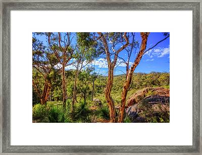 Framed Print featuring the photograph Heritage View, John Forest National Park by Dave Catley