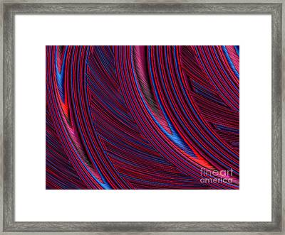 Herl In Red And Blue Framed Print by John Edwards