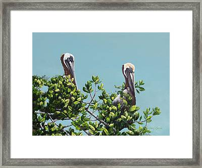 Watching The Bay Framed Print