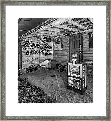 Herman Had It All 2 Bw Framed Print by Steve Harrington