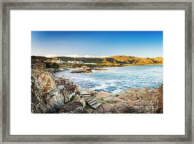 Hermanus South Africa Framed Print by Tim Hester