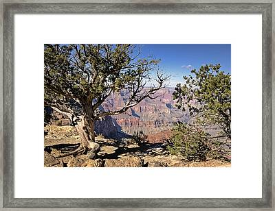 Framed Print featuring the photograph Hermits by John Gilbert