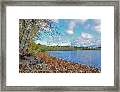Fall Picnic In Maine Framed Print by Glenn Gordon