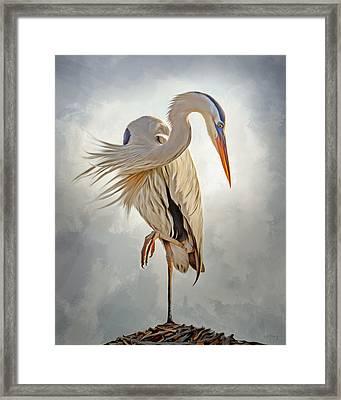 Great Blue Heron Artwork 0660 Framed Print