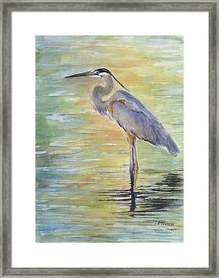 Heron At The Lagoon Framed Print