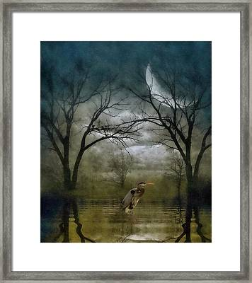 Heron By Moon Glow  Framed Print