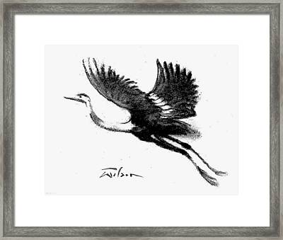 Heron Flying Framed Print by Ron Wilson