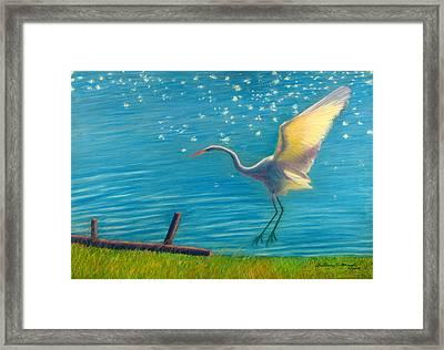 Heron Great White   Pastel   Framed Print