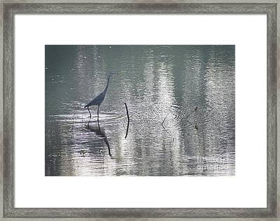 Framed Print featuring the photograph Heron In Pastel Waters by Skip Willits