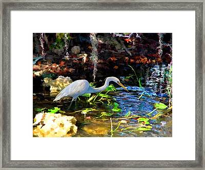 Heron In Quiet Pool Framed Print by David  Van Hulst