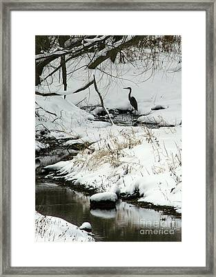 Heron In Winter Framed Print