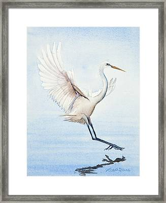 Heron Landing Watercolor Framed Print by Michelle Wiarda