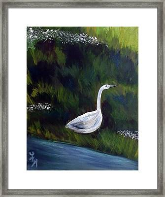 Heron Framed Print by Loretta Nash