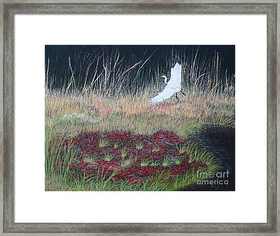 Heron Over Autumn Marsh Framed Print by Cindy Lee Longhini