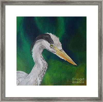 Heron Painting Framed Print by Isabel Proffit