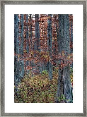 Heron Pond Twilight Framed Print by Steve Gadomski