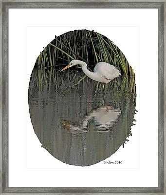 Heron Reflection Framed Print by Larry Linton