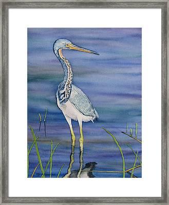 Heron Framed Print by Sharon Farber
