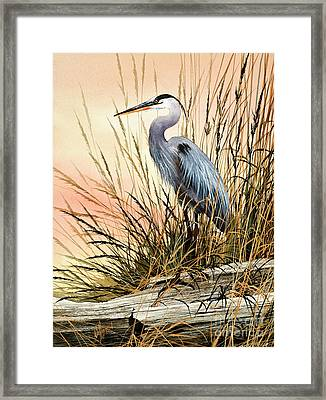 Heron Sunset Framed Print