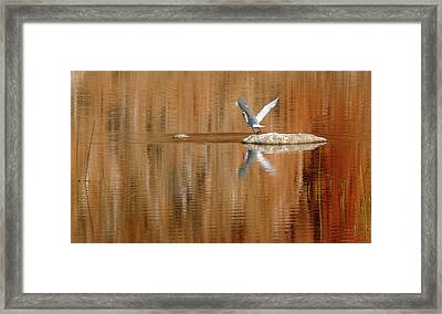 Heron Tapestry Framed Print by Evelyn Tambour