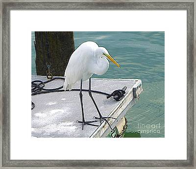 Heron Waiting Framed Print by Merton Allen
