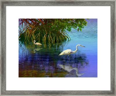 Herons In Mangroves Framed Print by David  Van Hulst