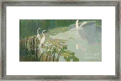 Herons In Summer Framed Print by Newell Convers Wyeth