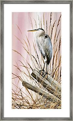 Herons Watch Framed Print by James Williamson