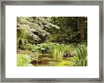 Herronswood Wetlands Framed Print