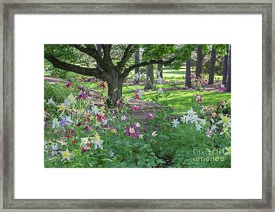 Framed Print featuring the photograph Hershey Gardens 1 by Chris Scroggins