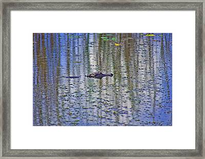 He's Happy Floating Framed Print