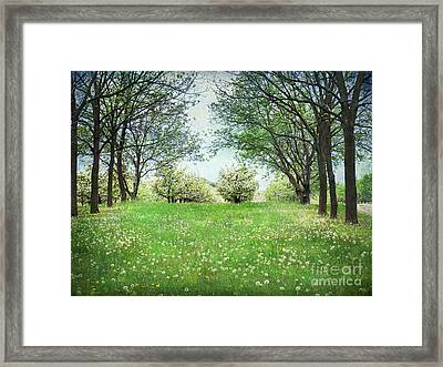 Framed Print featuring the photograph He's In The Orchard by Kathi Mirto