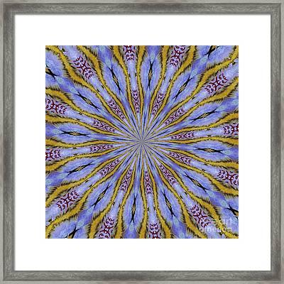 10491 Hey Jude Kaleidoscope 3 Framed Print