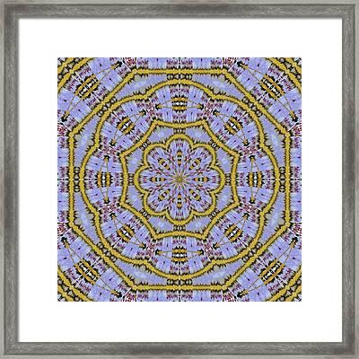 10493 Hey Jude Kaleidoscope 5 Framed Print