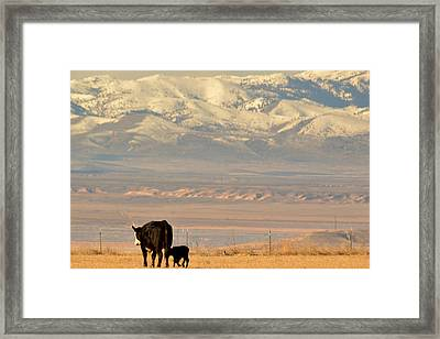 Framed Print featuring the photograph Hey Mom..  Wait Up by Al Swasey