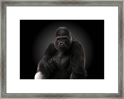 Hey There. Framed Print