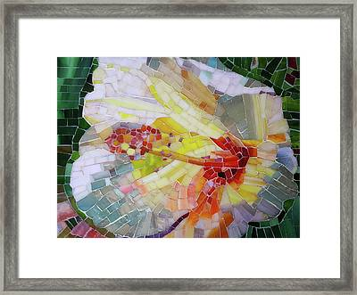 Hibiscus #1 Framed Print by Adriana Zoon